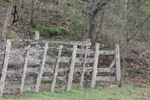 A Rustic Fence on the Property